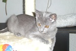 Doris im Alter von 3 Monaten